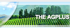food produce, market