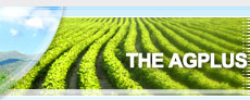 The portal contains information about different agricultural produce and markets where you can find   all you need without any trouble.