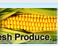 produce industry, food industry, agriculture market